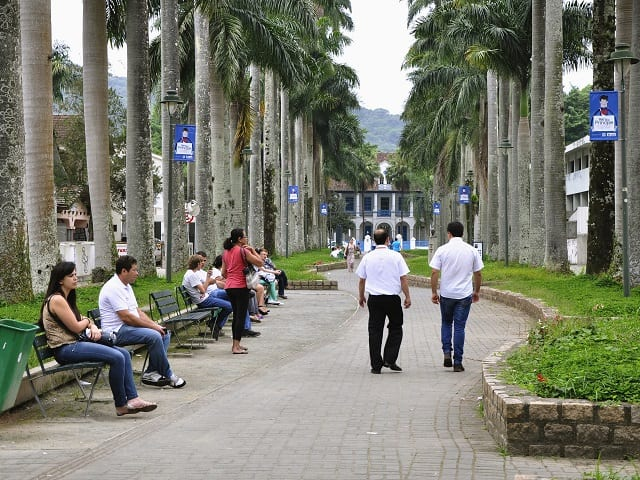 Joinville Brazil is a Leading Proponent of Urban Trees to fight climate change.