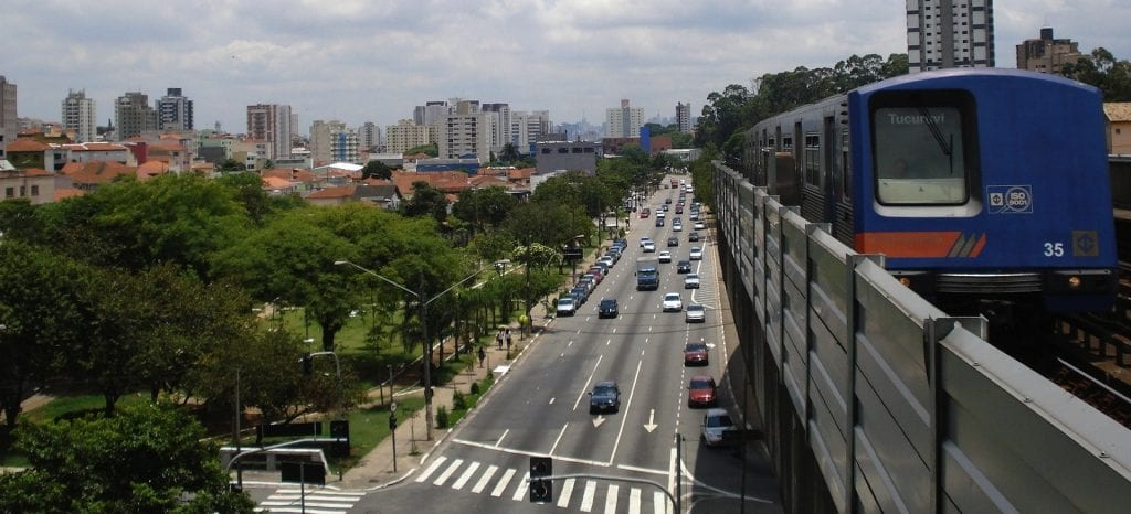 Every Tree Matters: Brazilian Cities Prioritize Urban Restoration