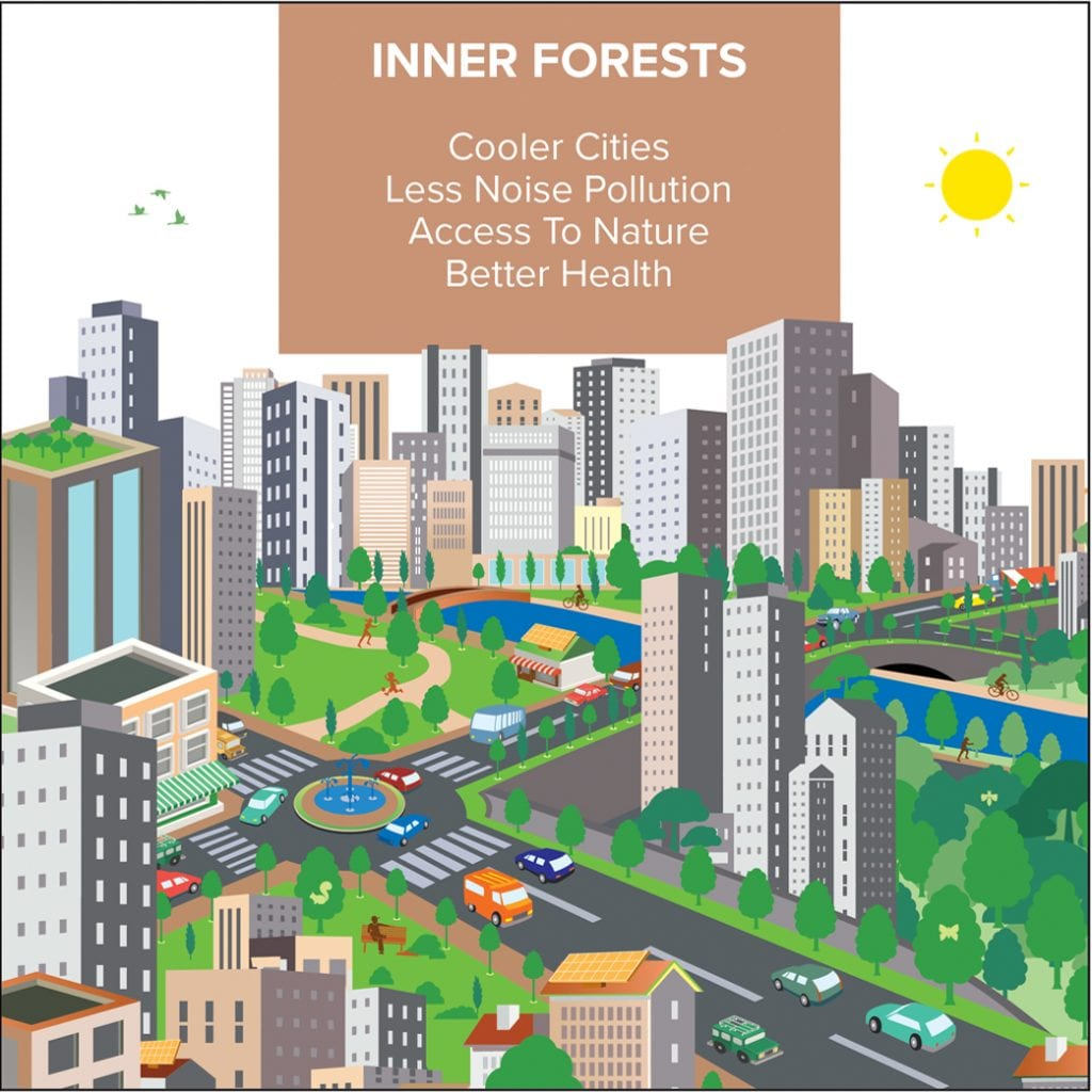 Cities4Forests | Connecting Cities with Forests around the world